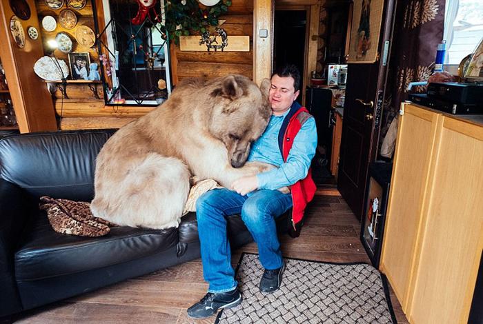 Медведь Степан и Юрий Пантелеенко.