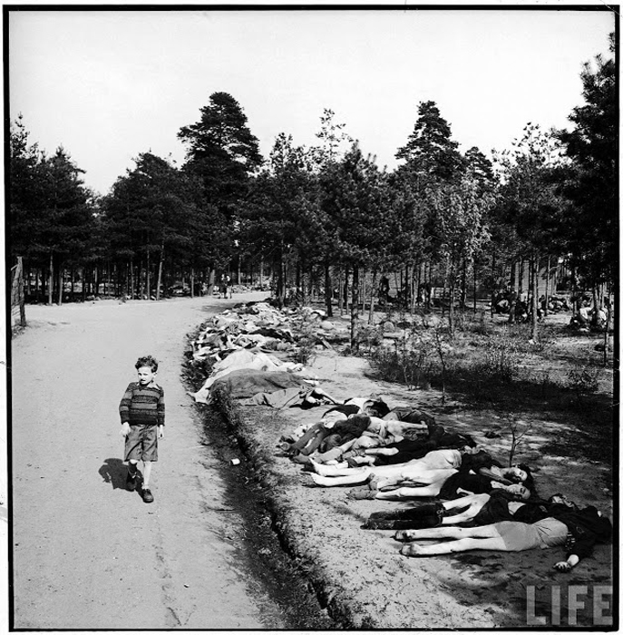 Немецкий мальчик идет по дороге, вдоль которой лежат тела заключенных, умерших от голода.