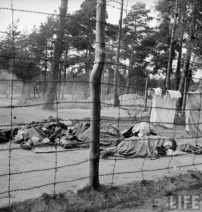 Мертвые и умирающие заключенные в только что освобожденном концлагере Берген-Бельзен.