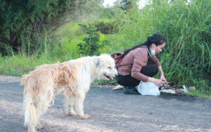 Саовалак несколько лет приходила и кормила Лео.