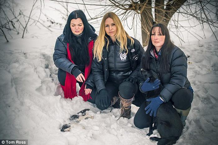 Женщины нашли собаку у дороги, которая мерзла в 25-градусный мороз.