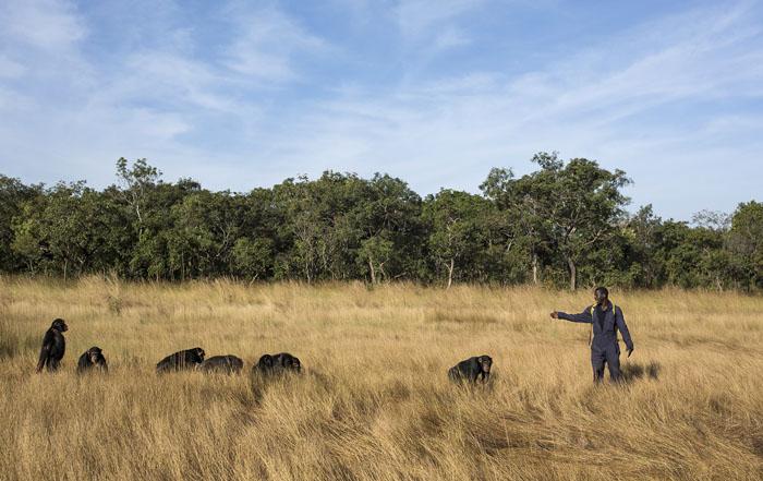 Работник центра выводит подопечную группу на природу.  Фото: Dan Kitwood.