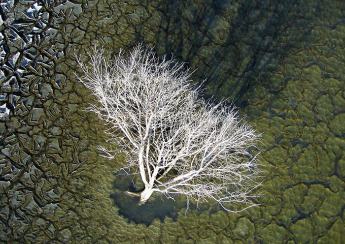 Пейзажи соляных прудов в США.