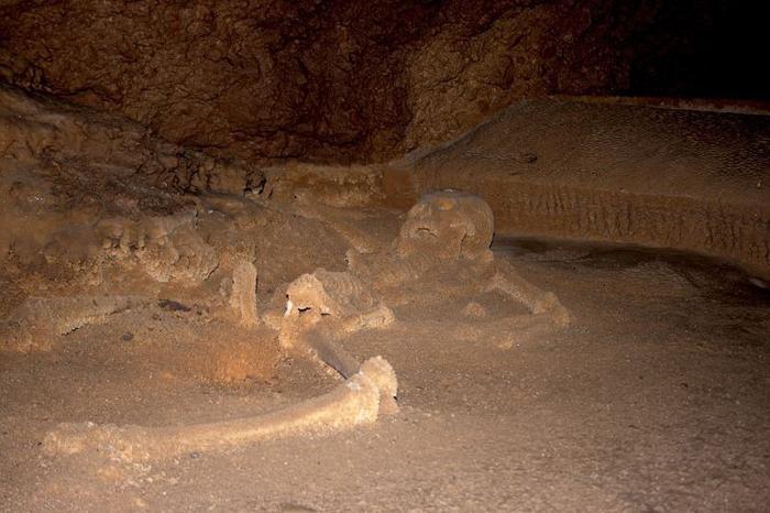 Внутри пещеры находятся скелеты жертв религиозных ритуалов Майя.