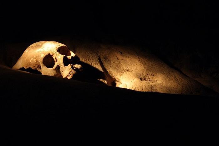 В пещере находятся 14 скелетов.