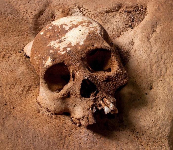 Скелеты в пещере покрыты толстым слоем пыли и кальцита.