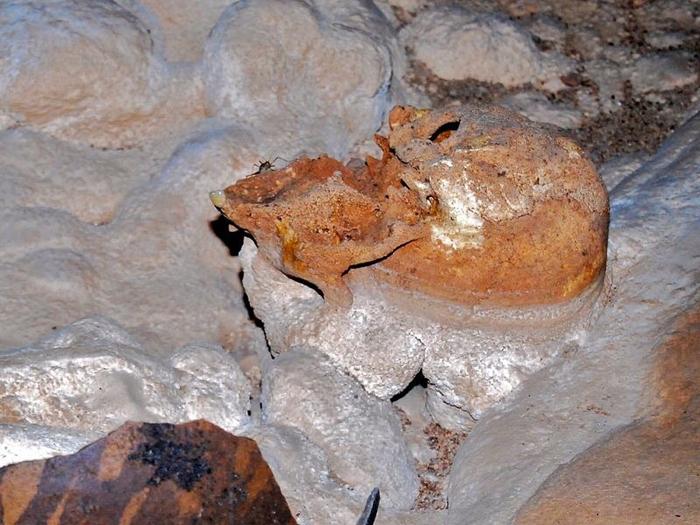 Кальцит покрывает почти всю поверхность пещеры.