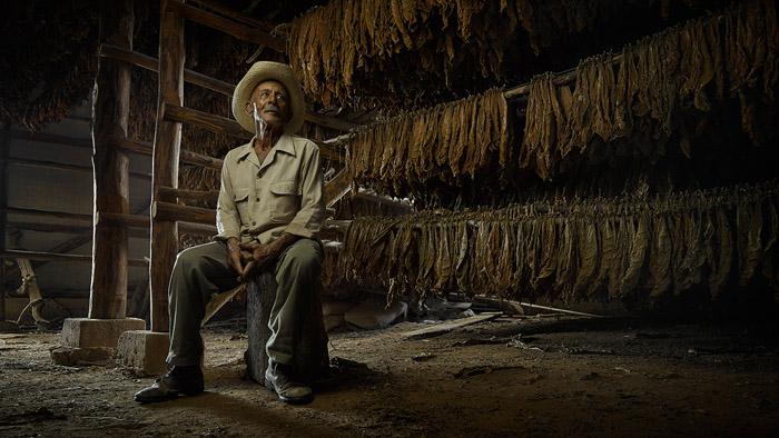 Эрнест Мальдонадо, 79 лет (Лас Овас, Куба). После сборки листья табака отправляются сушиться на пять месяцев, прежде чем их можно будет использовать для сигар.