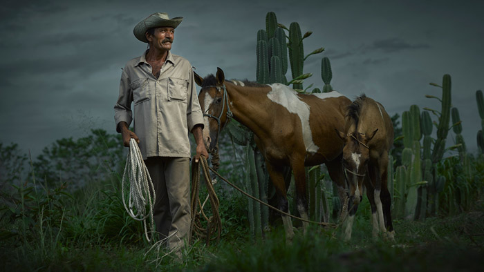 Рауль Кастенада с лошадьми.