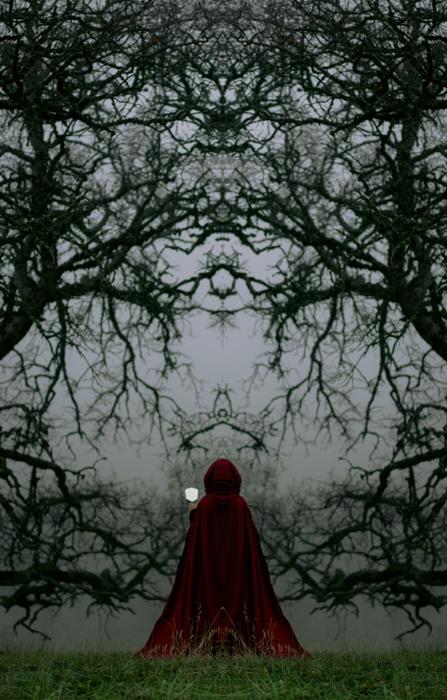 Разбитое зеркало. Автор фото: Daniel Vazquez.