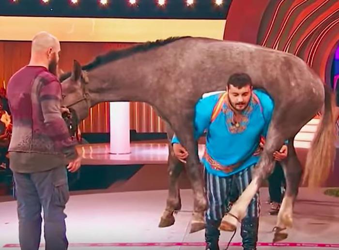 Дмитрий Халаджи поднимает в студии лошадь.