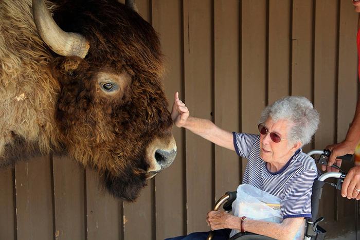Во время путешествия Норма завела необычных друзей.