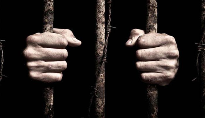 В голландских тюрьмах *не хватает* заключенных.