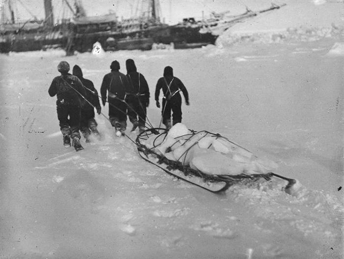 Команда тащит на санях лёд для питьевой воды.