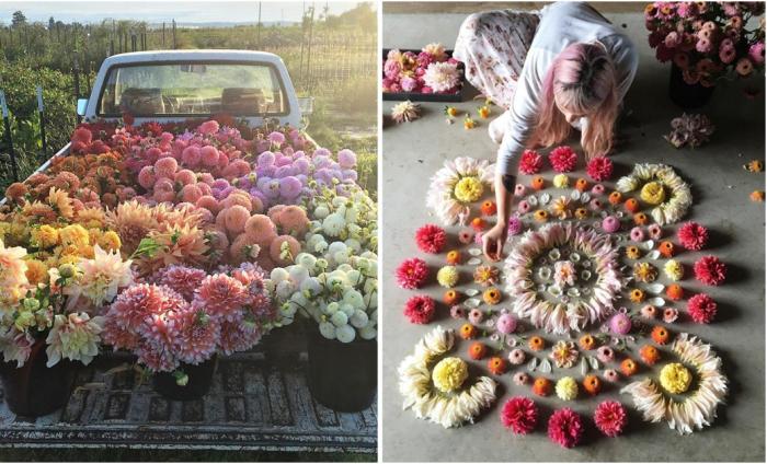 Цветочная жизнь от Эрин Бензакейн.