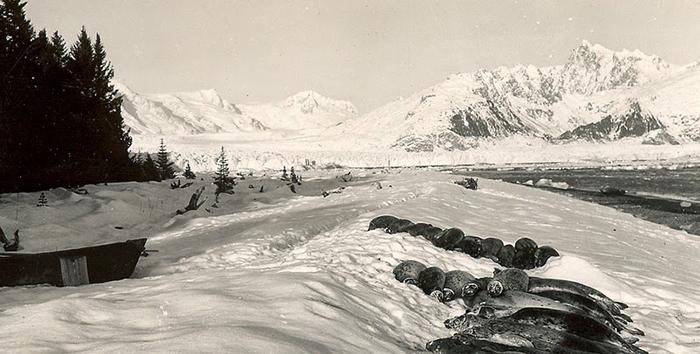 1920-1940-е.