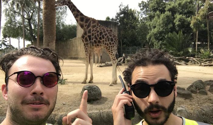 Дейв и Шон в зоопарке.