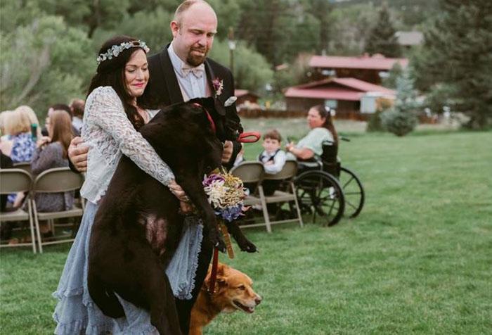 Подруга невесты несет лабрадора Чарли к алтарю. Фото: Jen DZ Photography.