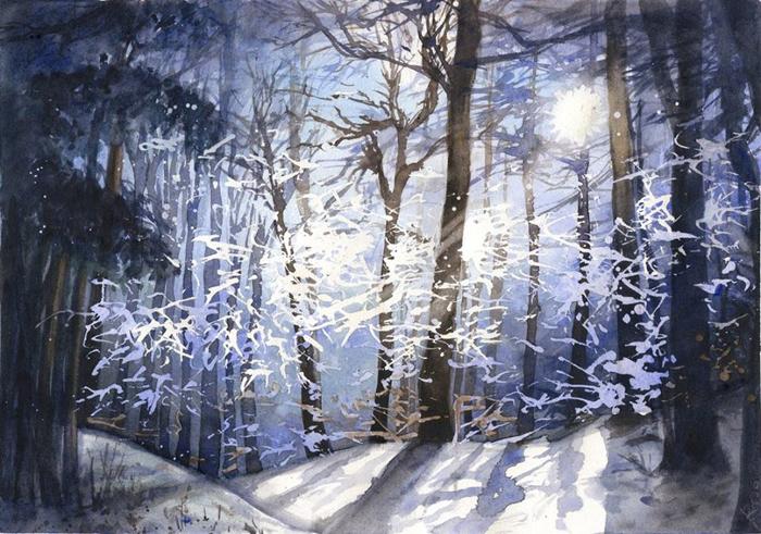 Морозная ночь. Автор: Joanna Rosa.