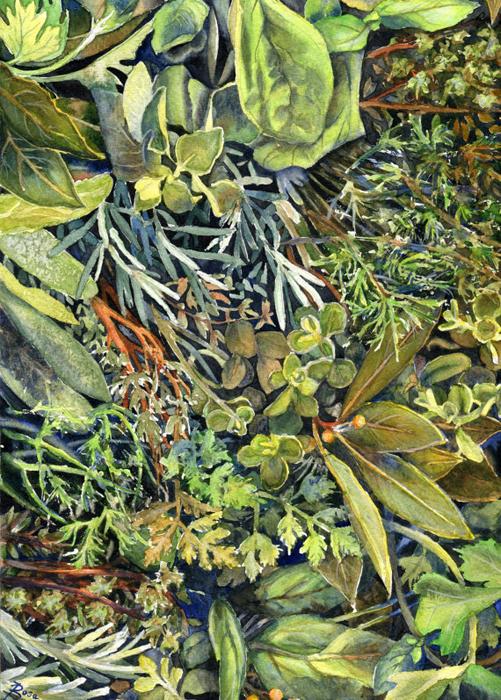 Травы. Автор: Joanna Rosa.
