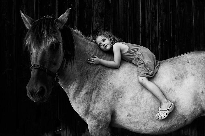 Большой друг.  Автор фото: Kicia Randagia.