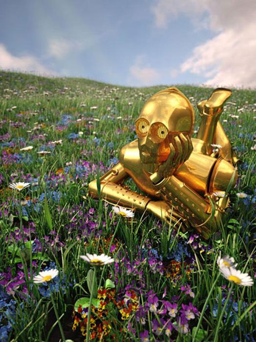 C-3PO на цветущем лугу.  Автор: Kyle Hagey.