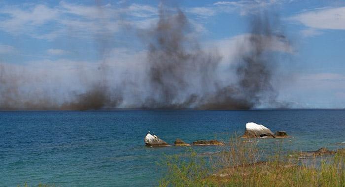 Рой мошкары над озером Виктория.