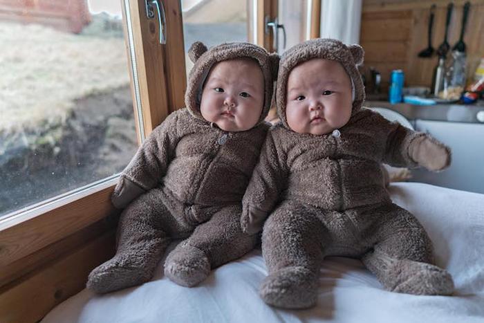 На кухне замечены медведи. Кому теплые объятия? Фото: Peter Lok.