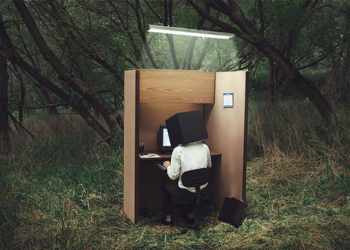Личный офис. Автор фото: Logan Zillmer.