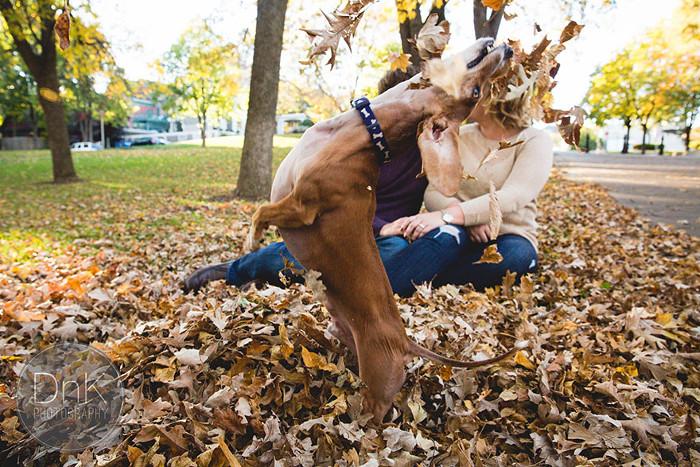Зачем нужен жених, когда есть верный и веселый пес?!