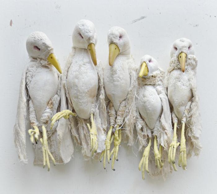 Белые птицы.