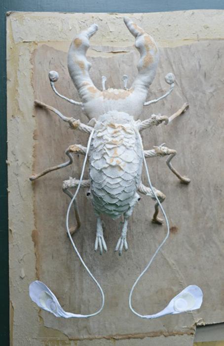 Белый жук.