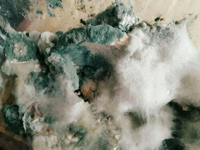 «Морозное утро в Альпах на картошечке с мясом».