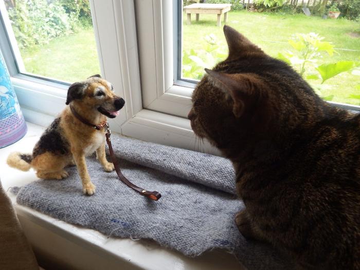 Войлочная собака встречает живого кота.