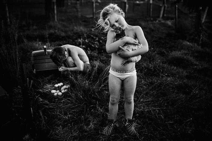 Курица. Фото: Niki Boon.