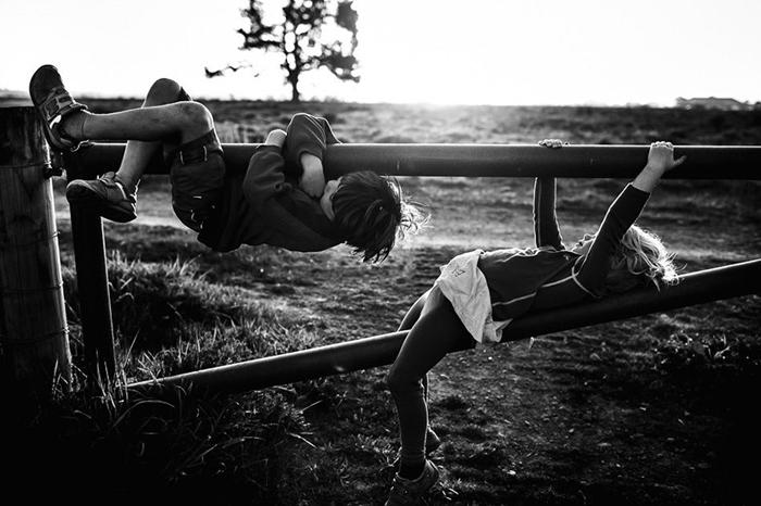 На заборе. Фото: Niki Boon.