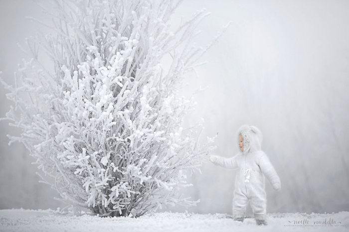 Зимний туман. Фото: Noelle Mirabella Photography.