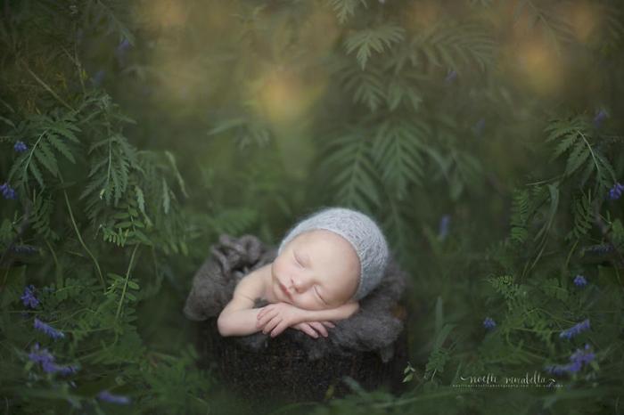 Лесной гномик. Фото: Noelle Mirabella Photography.