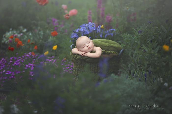 Сон в цветущем саду. Фото: Noelle Mirabella Photography.