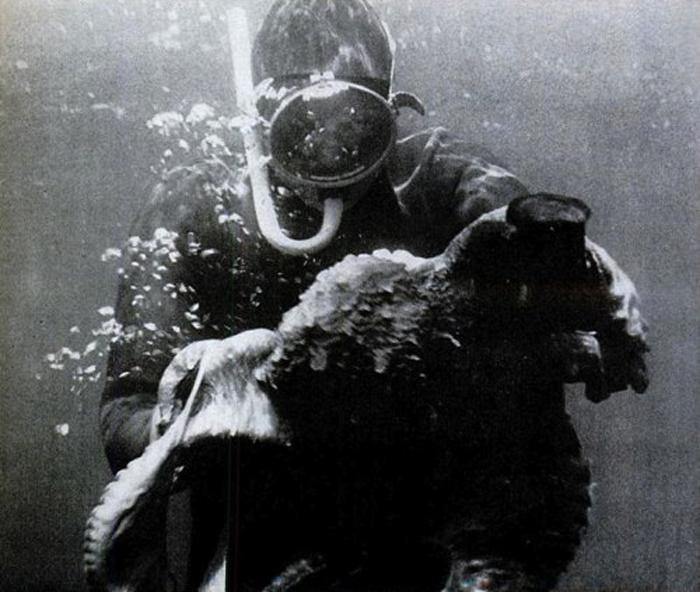 Борьба под водой на большой глубине.