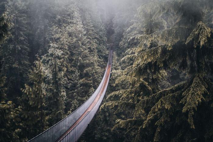 Навесной мост. Фото: Patrick Monatsberger.