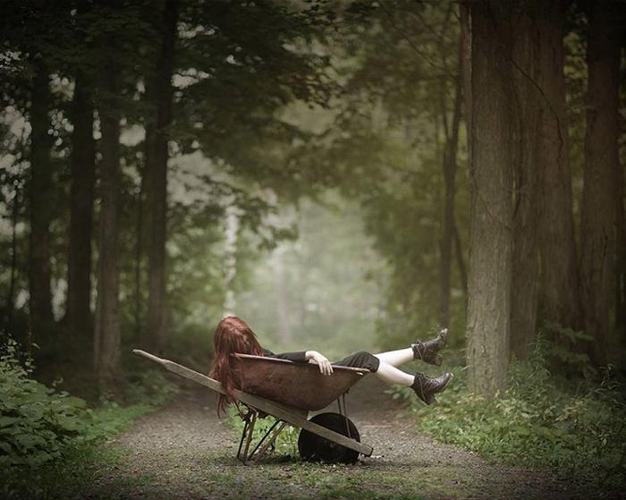 В старом лесу. Фото: Patty Maher.