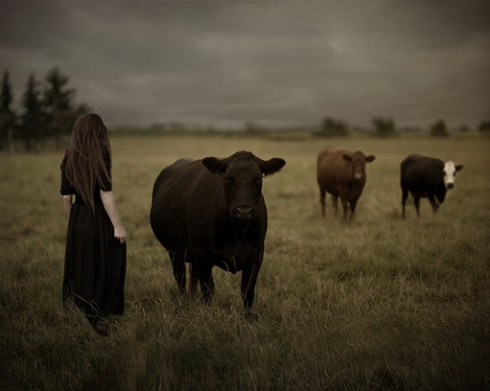 Концептуальные фотографии Пэтти Майер.