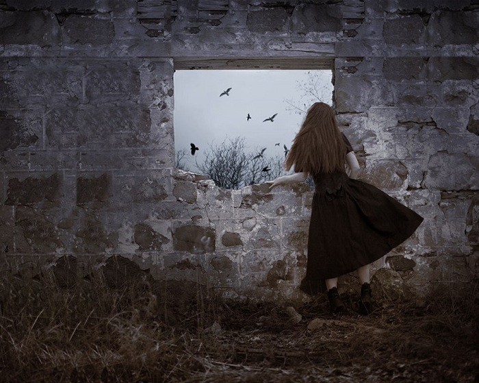 За окном. Фото: Patty Maher.