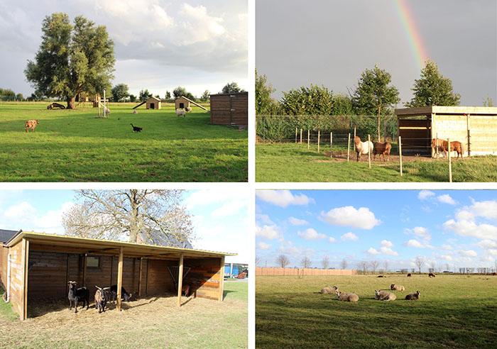 Ферма располагает двумя акрами земли.