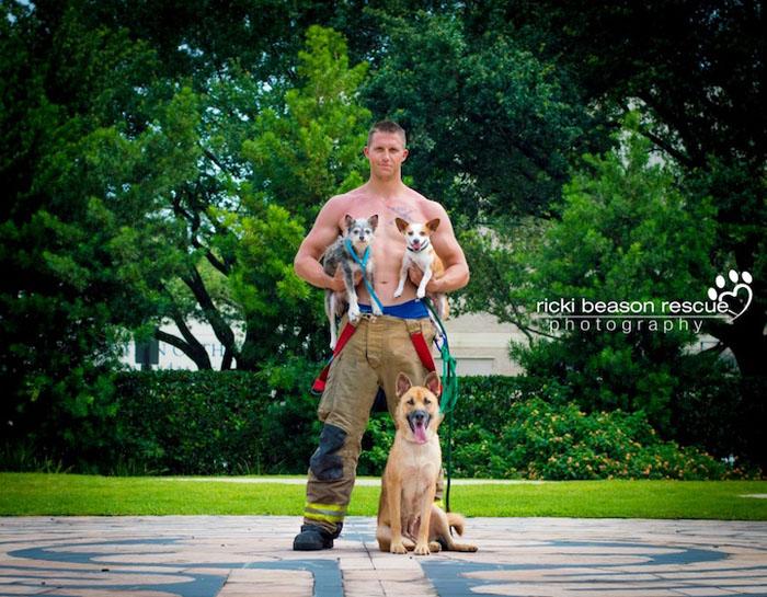 Сердцееды и гончие собаки.  Фото: Ricki Beason.