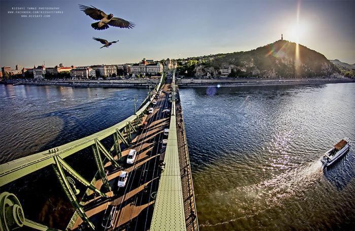 На мосту. Автор фото: Tamas Rizsavi.