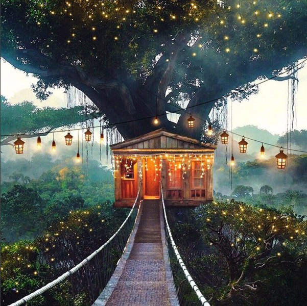 Если мы заберемся на высокое дерево и ты не сможешь спуститься, я построю лучший в мире дом для нашей новой жизни над землей. Автор: Robert Jahns.