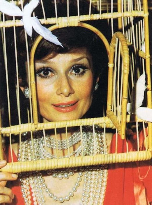 Отдри Хепберн с головой в птичьей клетке.