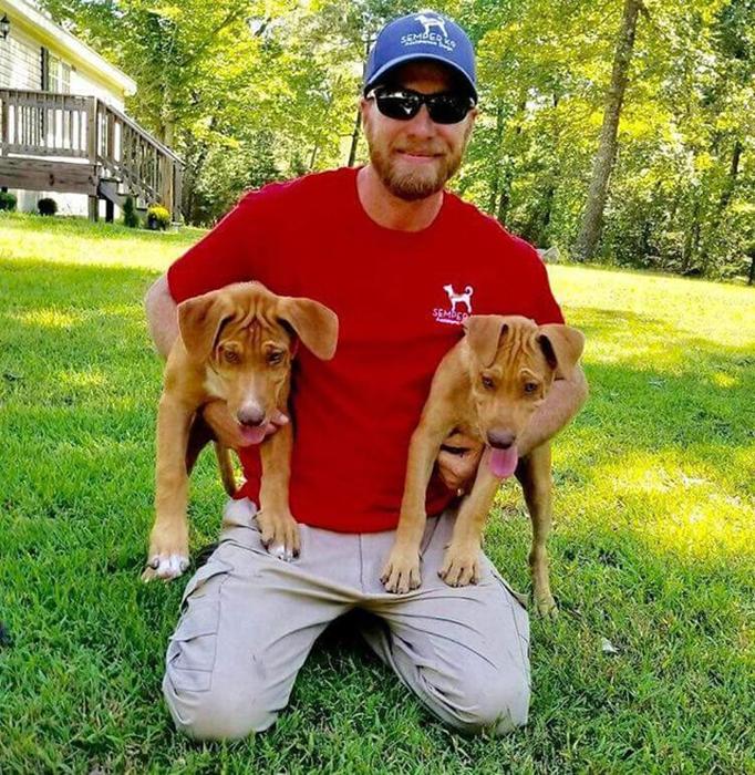 Кристофер Бейт с двумя собаками, обучаемыми в центре.
